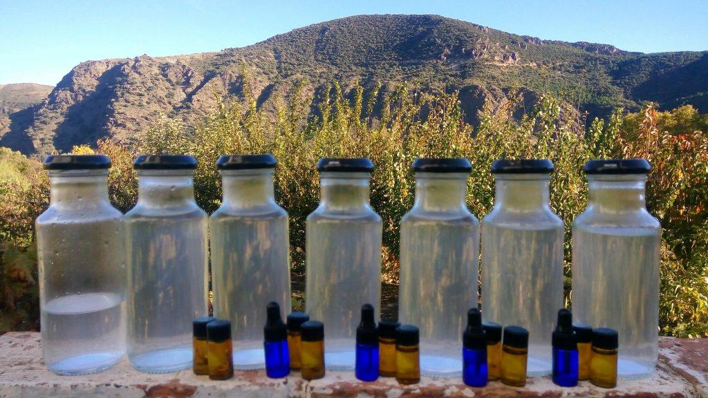 how to distil lavender oil