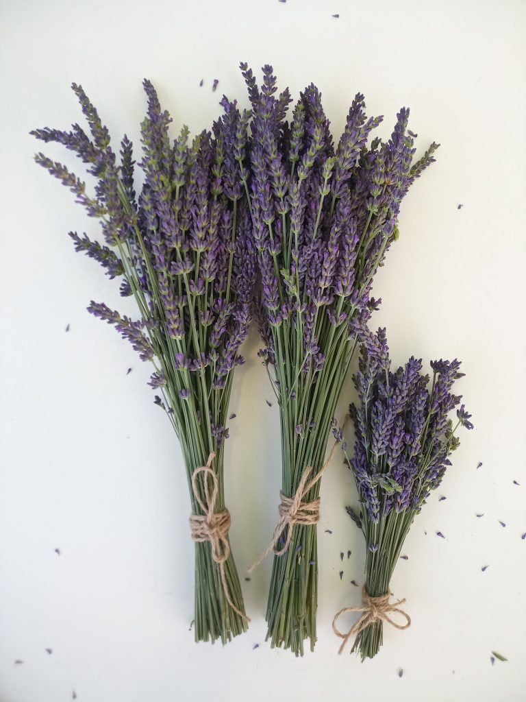 Essentialblue everlasting lavender bouquet