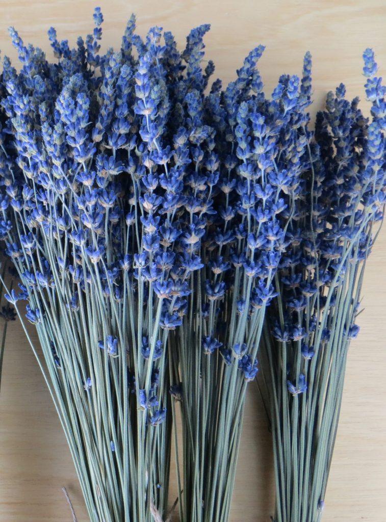 blue lavender essential.blue